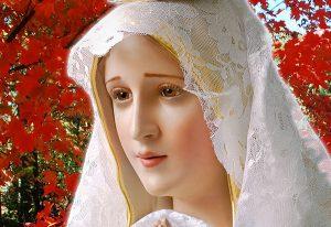 Cuidados da Mãe de Deus
